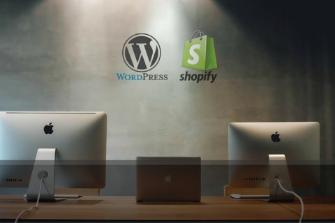 How to Build Websites_ Choosing WordPress or Shopify